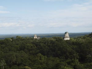 The Mayas in the Guatemalan tropical forest