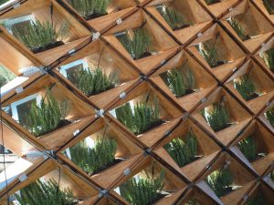 Using wood as material to reduce climate change